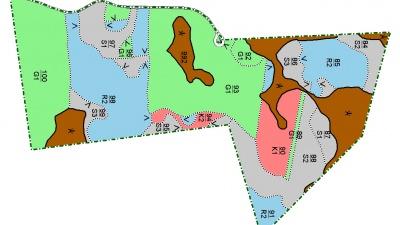 Skogsskötselplan