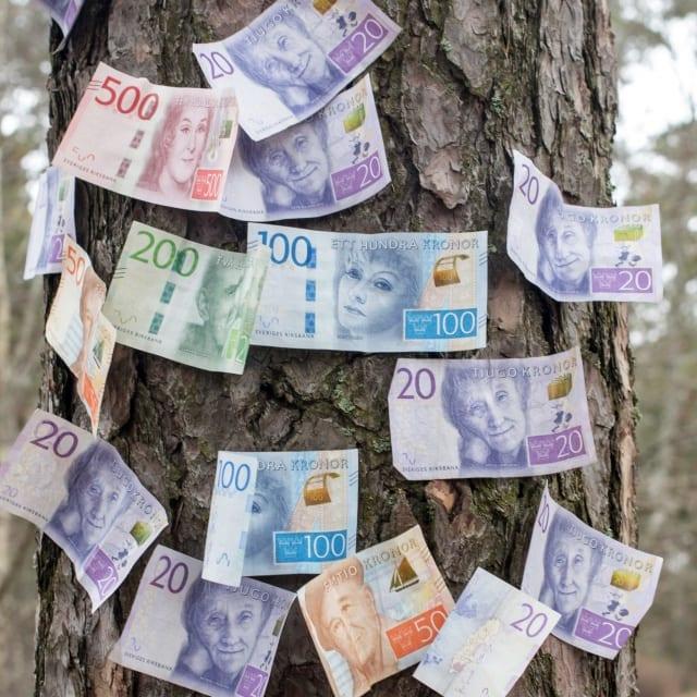 Pengar på träd