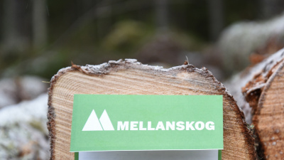 Marknadsanpassning av Mellanskogs virkespriser