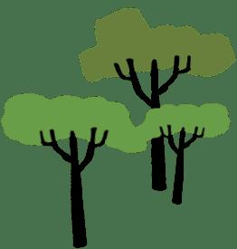 tecknade träd