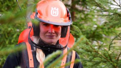 Mellanskogs hållbarhetsredovisning för 2018