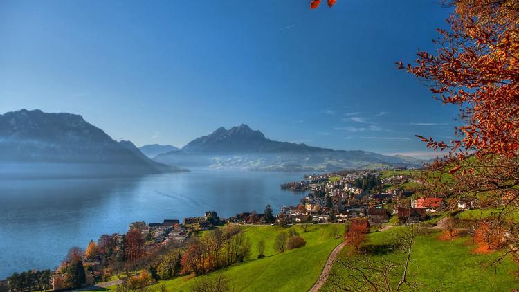 UPPSKJUTET: Skoglig studieresa till Schweiz